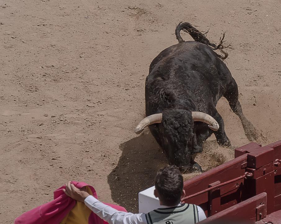 As touradas também foram apreciadas pelo famoso escritor