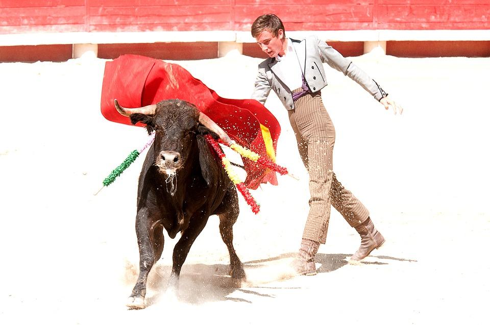 Descobrindo a tradição das touradas e também das touradas em Espanha