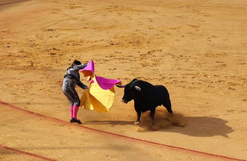 Sociologia: o ritual das touradas na Andaluzia, Espanha