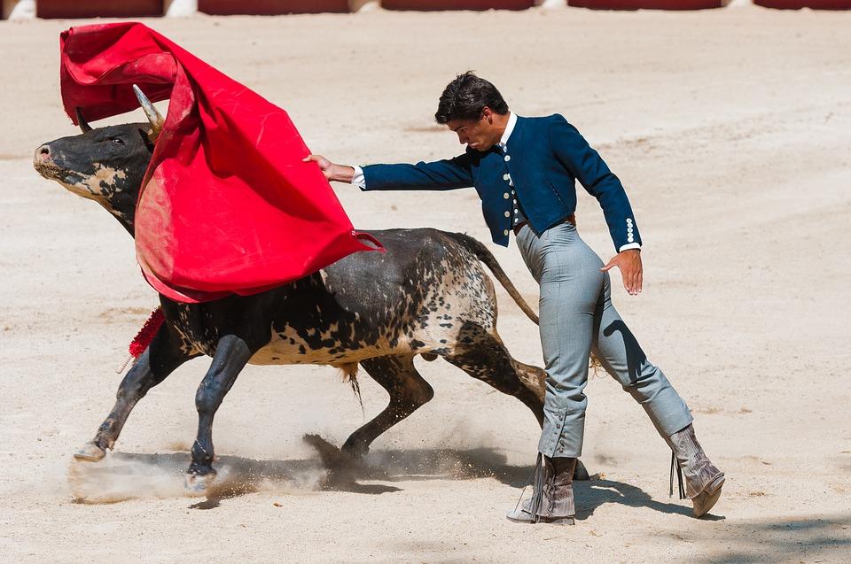 Touradas em Espanha: tudo é um pouco diferente do que dizem!